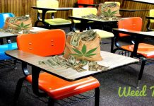 colorado school